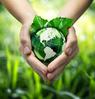 Patrimoine et environnement